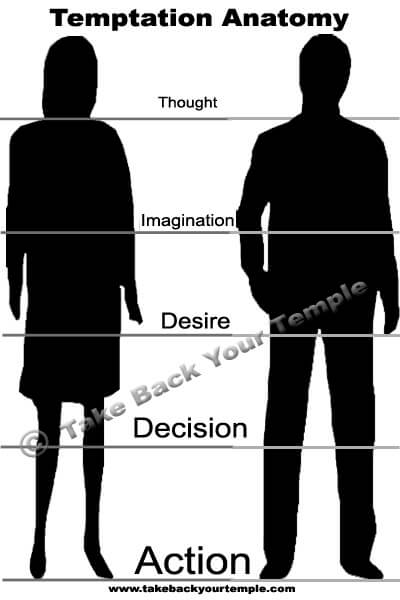 Tempation Anatomy